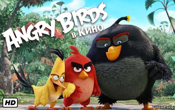 Angry Birds Kino