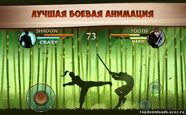 Shadow Fight 2 (android)